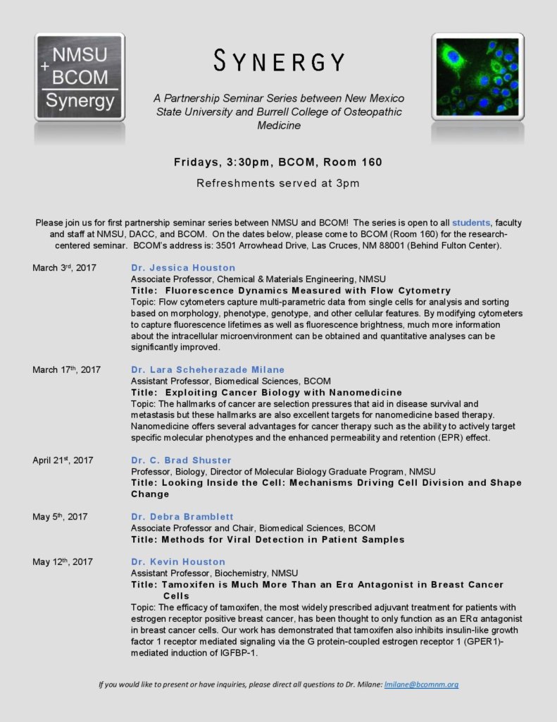 Synergy Flyer-page-001